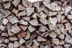 接近的木柴堆为冬天堆积了切好的木树干他 免版税库存照片