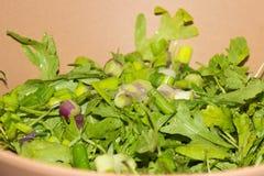 接近的沙拉被射击蔬菜 免版税库存照片