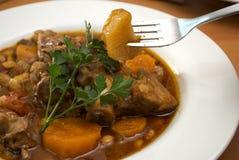 接近的盘羊羔炖煮的食物 免版税库存照片