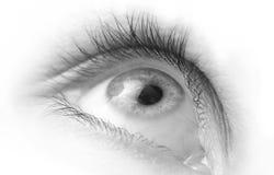 接近的眼睛高关键字 免版税库存照片