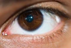 接近的眼睛 免版税图库摄影