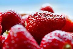 接近的红色草莓 库存照片