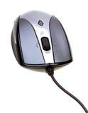 接近的计算机白色的查出的鼠标 免版税库存照片