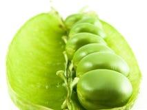 接近的豌豆 免版税图库摄影