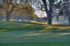 接近的路线高尔夫球绿化hdr 库存照片