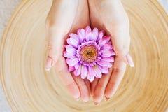接近的重点图象有选择性的温泉处理 妇女举行美丽的花在她的手上 免版税库存照片