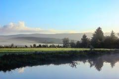 接近的露水小滴放牧叶子早晨理想的水 图库摄影
