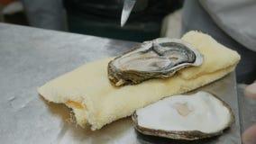 接近的食物:厨师打开牡蛎宏观摄影,在组织餐巾,餐馆盘的牡蛎谎言 股票录像