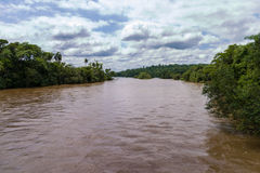 Iguacu河 库存照片