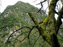 接近马丘比丘的山,秘鲁 库存照片