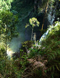 接近马尼萨莱斯-哥伦比亚的瀑布 免版税库存图片