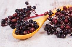 接骨木浆果堆与木匙子的在老木背景,健康食物 库存照片
