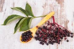 接骨木浆果堆与木匙子的在老木背景,健康食物 免版税库存图片