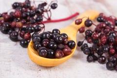 接骨木浆果堆与木匙子的在老木背景,健康食物 免版税库存照片