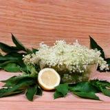 接骨木浆果花和柠檬 免版税库存照片