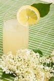 接骨木浆果调味的花茶点夏天 免版税图库摄影