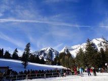 推力的滑雪者联盟在山 免版税库存照片