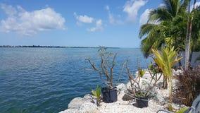 推弹杆关键佛罗里达, 免版税库存图片