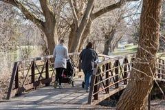 推挤婴儿推车的两个年轻妈妈在公园在早期的春天 图库摄影