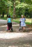 推挤婴儿推车的两个年轻母亲背面图在公园 库存照片