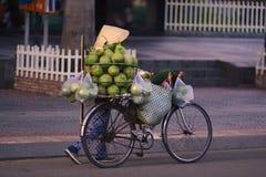 推挤自行车出售椰子果子的越南妇女 库存照片