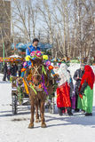 推车利用的马是俄国h的幸运人 库存照片