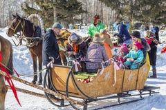推车利用的马是俄国h的幸运人 库存图片