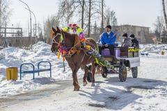 推车利用的马是俄国h的幸运人 图库摄影