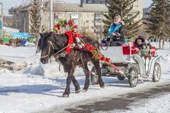 推车利用的马是俄国h的幸运人 免版税库存图片