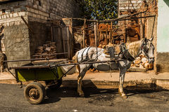 推车在特立尼达,古巴 免版税库存照片