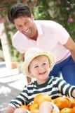 推进独轮车的父亲儿子 免版税图库摄影