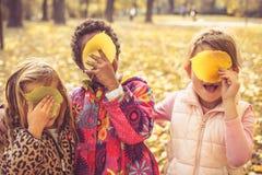 掩藏在下落的叶子后 开玩笑本质 图库摄影