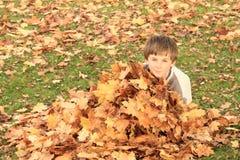 掩藏在叶子后的男孩 免版税库存照片