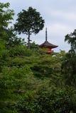 掩藏在绿色后的清水寺寺庙的塔在小山生叶在京都附近 免版税库存图片