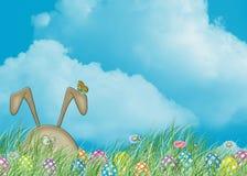 掩藏在草的复活节兔子 库存照片