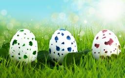 掩藏在长的草的三个复活节彩蛋 免版税库存图片