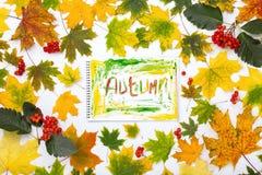 措辞在一个册页的秋天与秋叶 库存照片