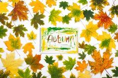 措辞在一个册页的秋天与秋叶 库存图片