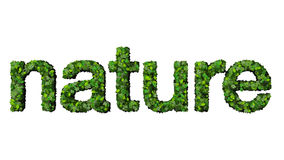 措辞由绿色叶子做的自然被隔绝在白色背景 库存图片