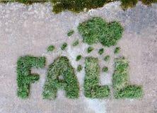 措辞秋天由与云彩和雨珠的干绿草制成在灰色石背景 多雨天气秋天 免版税库存照片