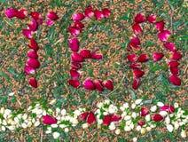 措辞茶由玫瑰色茶芽制成在下面划线与茉莉花花蕾 日本绿茶混合和烤糙米在背景 免版税库存照片