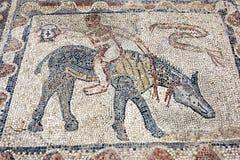 描述一个人的古老罗马马赛克骑马在Volubilis在摩洛哥 库存照片