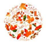 描述一套叶子、枝杈、莓果、花、秋天元素和题字11月的9月, 10月,例证 图库摄影