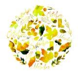 描述一套叶子、枝杈、莓果、花、秋天元素和题字11月的9月, 10月,例证 WA 免版税库存图片