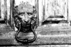 描述狮子的黄铜敲门人特写镜头 免版税库存图片