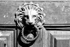 描述狮子的黄铜敲门人特写镜头 库存图片