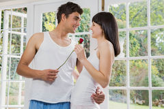 提供一朵红色玫瑰的人为妇女 免版税库存图片