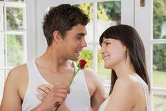 提供一朵红色玫瑰的人为妇女 库存图片