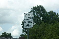 提供了没有宠物符号 免版税库存照片