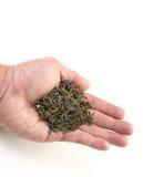 提供干绿色茶叶的手 免版税库存照片